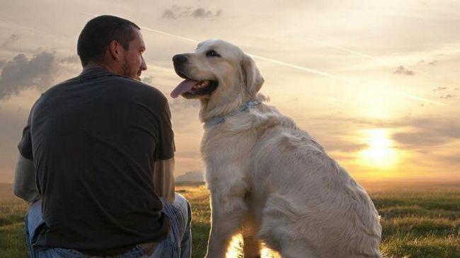 11 Признаков, что вы нашли партера для длительных отношений