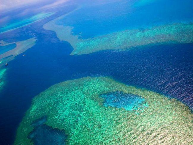 23 Фото, подтверждающих, что большой барьерный риф - идеальное место для отдыха