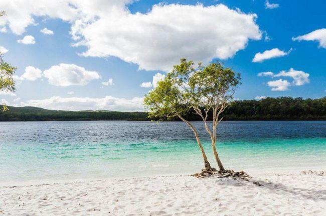 50 Вещей, которые следует сделать во время путешествия в австралию и новую зеландию