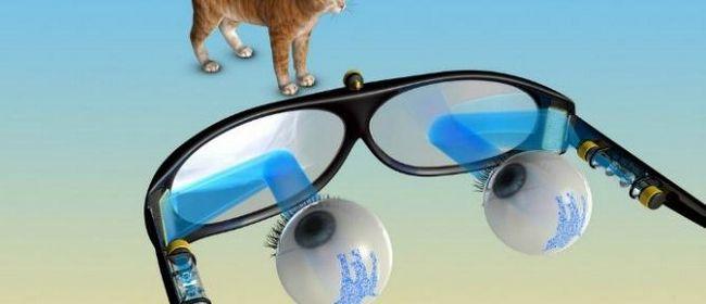 Болезни глаз у людей: симптомы и лечение
