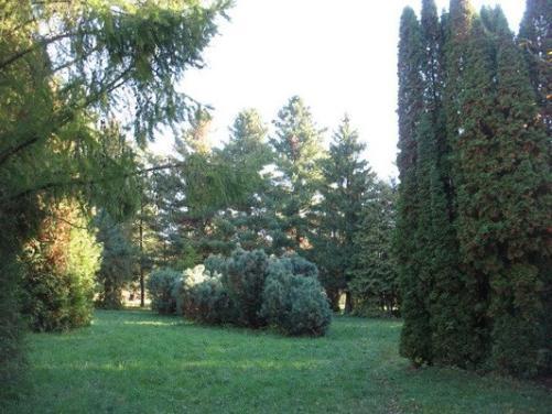 ботанический сад нижний новгород