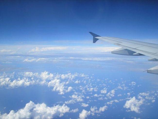 Будущее авиакомпании