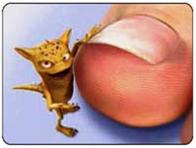 Чем лечить грибок на ногтях ног: разные способы