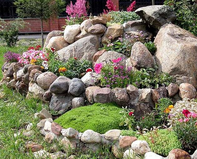 Цветы для альпийской горки: особенности подбора