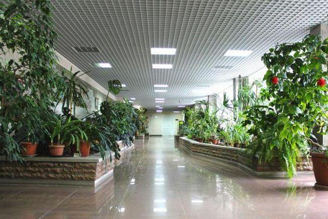 детская городская больница 1 на авангардной поликлиника