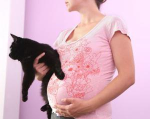пцр токсоплазмоз и беременность