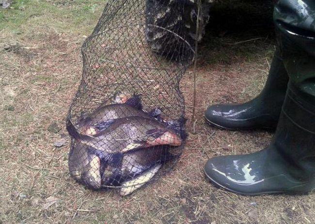 озеро длинное рыбалка