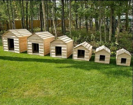 будки для немецкой овчарки фото