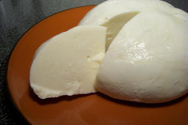 изготовление домашнего сыра из молока