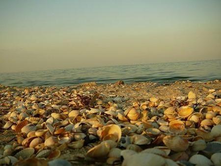 Достопримечательности бердянска - море, воздух и вода?