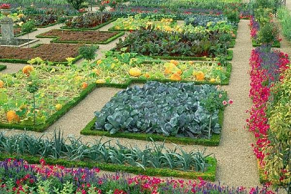 французский стиль огорода