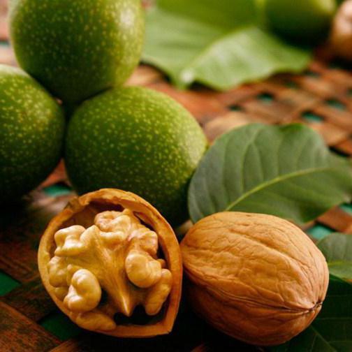 калорийность 1 грецкого ореха