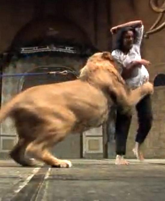 к чему снится лев нападает