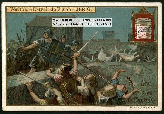 Как гуси спасли рим, или зоология в истории