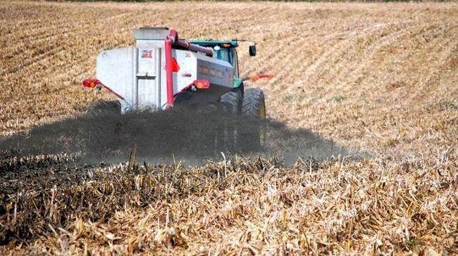 сохранение плодородия почв