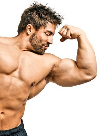 Как нарастить мышцы максимально быстро?