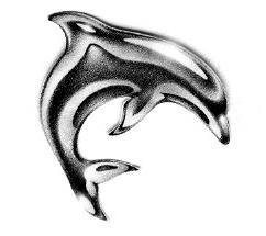 Как нарисовать дельфина: пошаговая инструкция.