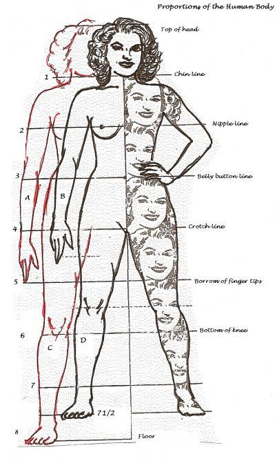 Как нарисовать девушку в полный рост, соблюдая пропорции
