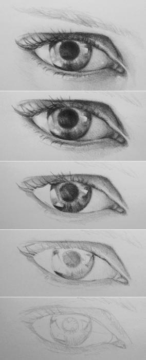 Как нарисовать глаза и сделать их выразительными