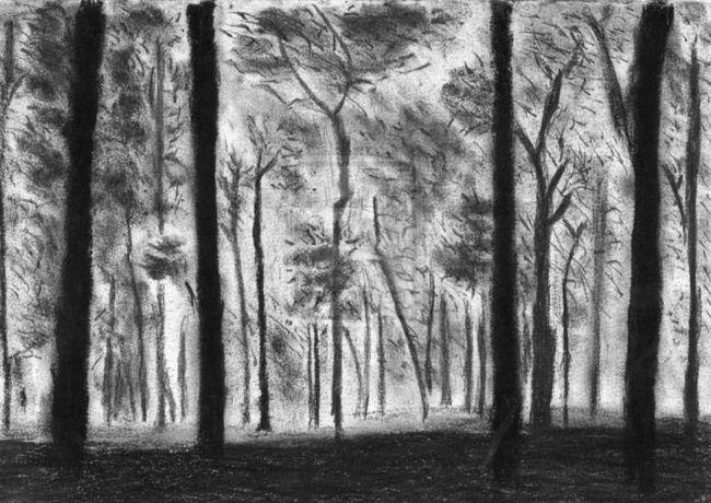 Как нарисовать лес. Приучаем детей беречь природу