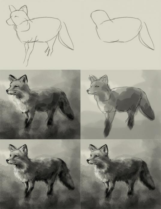 Как нарисовать лису: инструкция