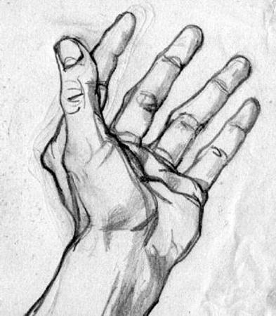 Как нарисовать руку правильно
