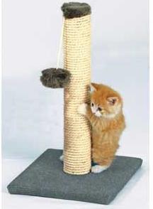 когтеточка для кошки