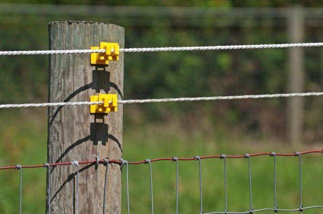 электропастух для овец своими руками