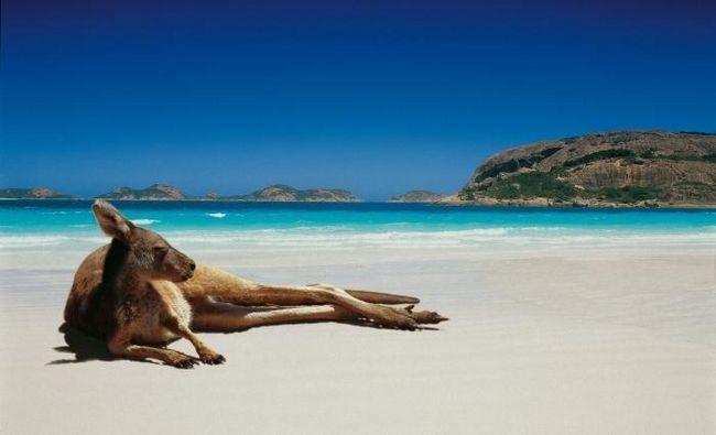 Как уехать в австралию на пмж