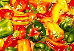 Как выращивать и чем подкормить рассаду перцев