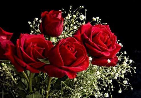 Как вырастить розу из букета, или сохраняем красоту навсегда