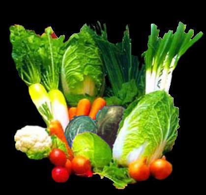 Как заморозить овощи и фрукты. Домашние заготовки