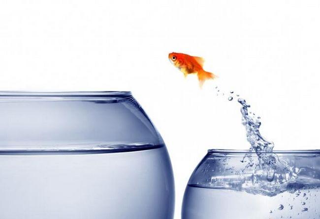 Как заставить себя заняться собой: шаги к успеху