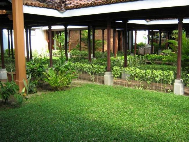 Каким должен быть газон на даче