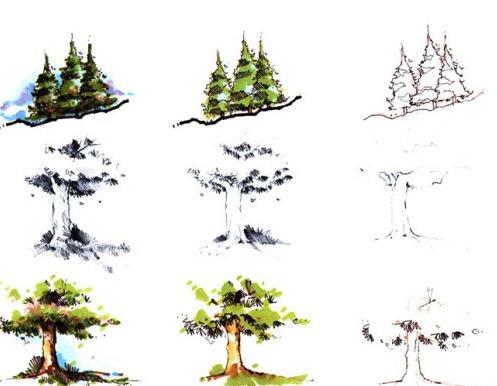 Нарисовать дерево карандашом