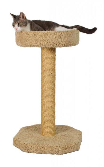 когтеточка для кошки своими руками мастер класс