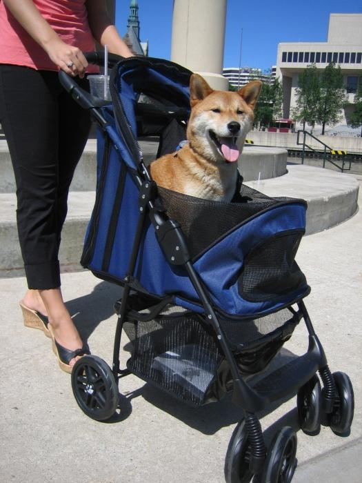 Прогулочная коляска для собак