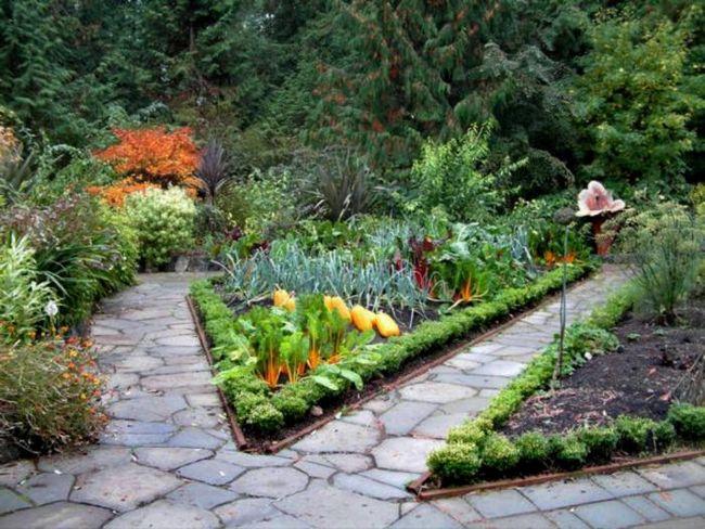красивое оформление огорода своими руками