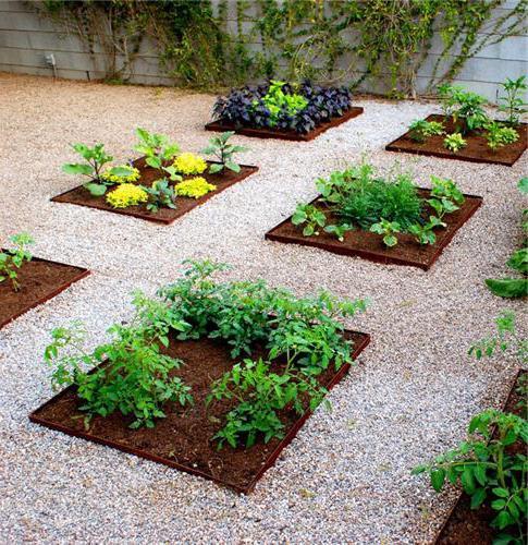 красивое оформление огорода своими руками фото