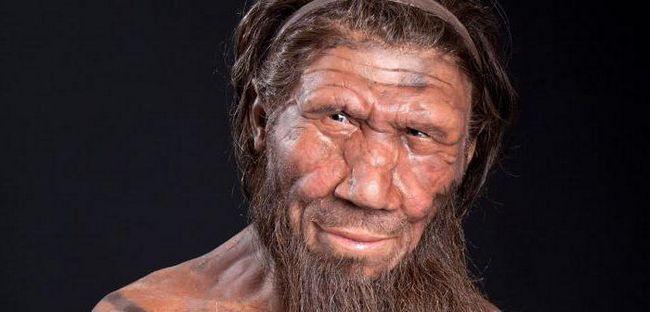 древний предок человека