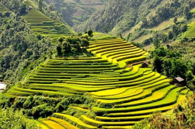 вьетнам куда лучше ехать