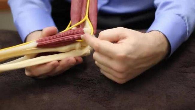 локтевой сустав болезни