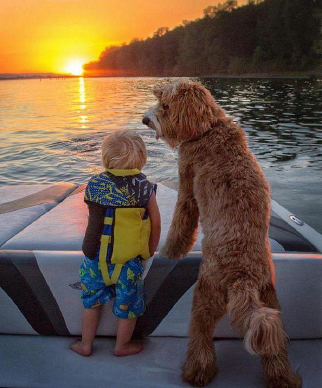 Лучшие друзья: очаровательные снимки малыша и его пса