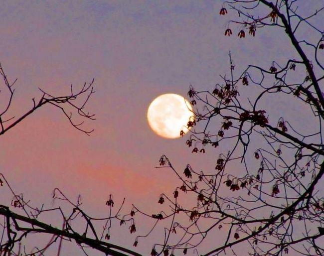 состояние луны