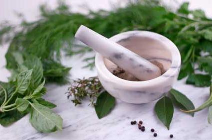 Народная медицина: травы для очищения организма