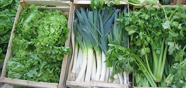 Нитраты в овощах и фруктах можно проверить тестером