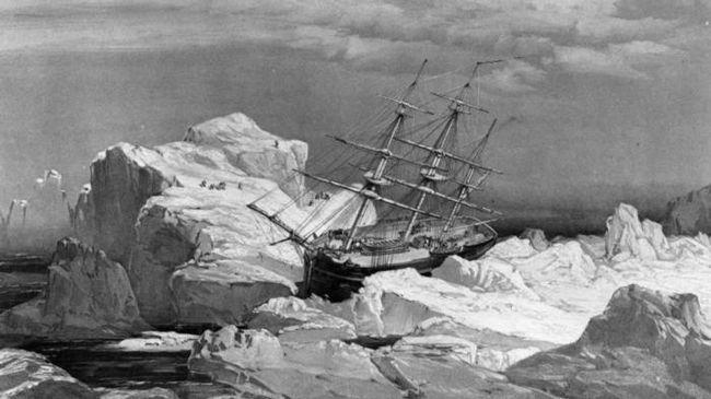 Ноготь одного из матросов открывает тайну обреченной экспедиции франклина в арктику