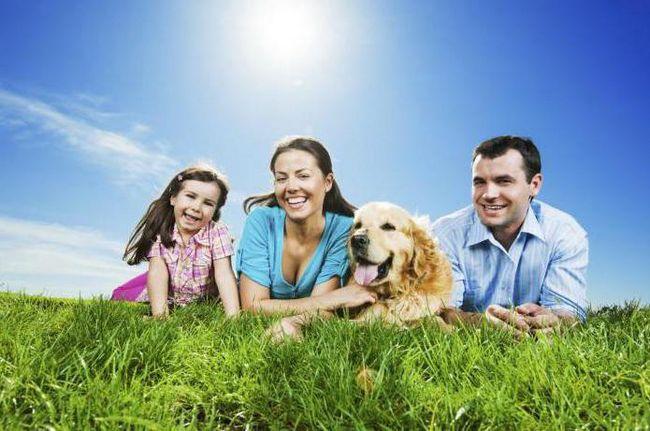 общие дела и интересы семьи примеры