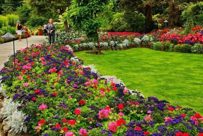 Оформление цветников - твори и любуйся