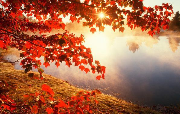 Осенний пейзаж глазами писателей, композиторов и поэтов